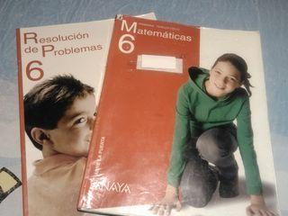 Matematicas 6°