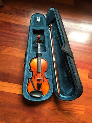 Violin pequeño