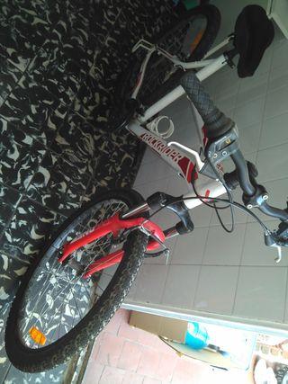 Bicicleta mujer