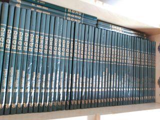 DEGU (Dicionario Enciclopédico Galego Universal).