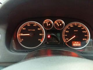 Peugeot 307SW 1.6i 7 plazas