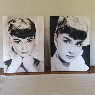 Picture - Audrey Hepburn