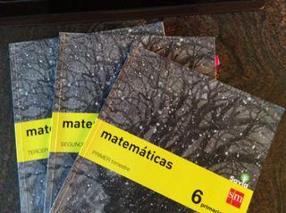 Matemáticas 6 primaria ed SM