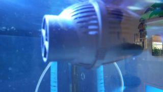 Bomba regeneradora de agua acuarrio. 5000 l/h