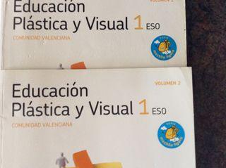 Educaciòn plástica y visual 1