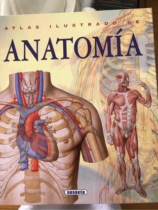 Libros de anatomia de segunda mano en Barcelona en WALLAPOP