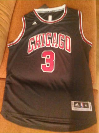 Chicago Bulls NBA Wade nueva