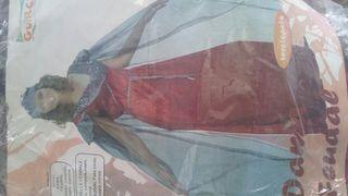 Disfraz dama feudal nuevo