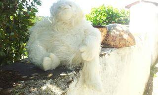 muñeco mono blanco