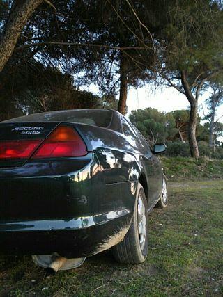 honda accord coupe 2000