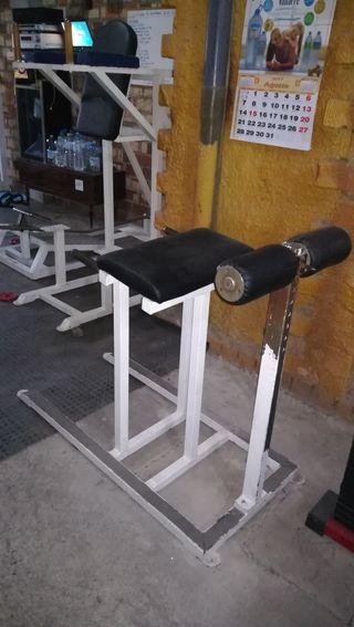 Máquina Lumbares y Fondos Tríceps