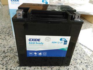 Batería Exide YB30L-B AGM 12-31