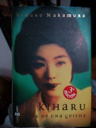 hikaru vida de una geisha