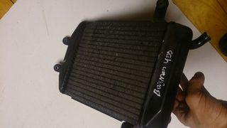 radiador suzuki burgman 250-400