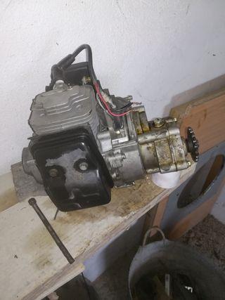 motor mini moto