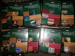 Colección Naturaleza Salvaje