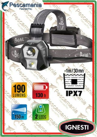 frontal Led BEAL