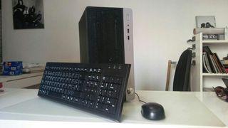 ordenador HP prof.