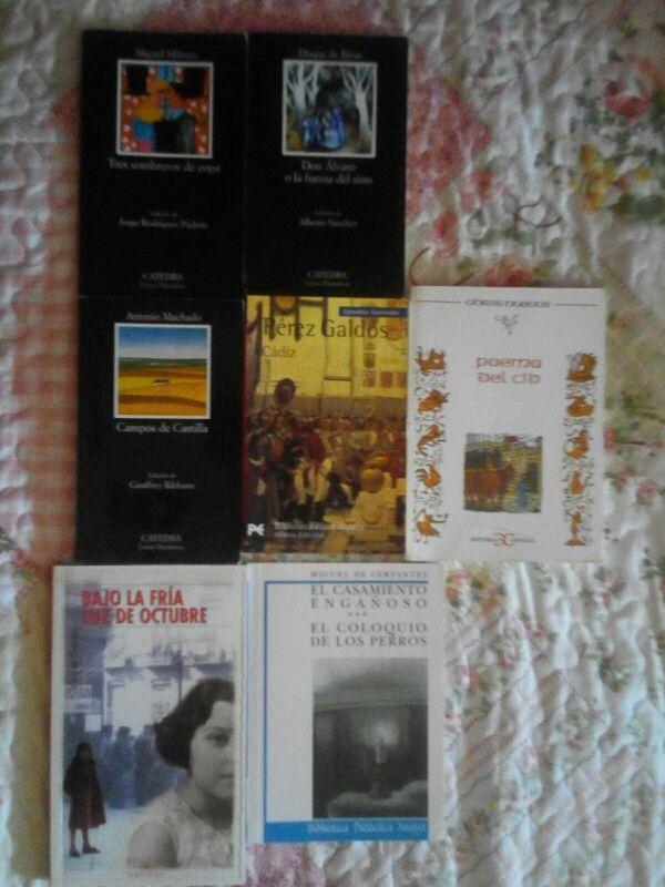 Lote de 7 libros