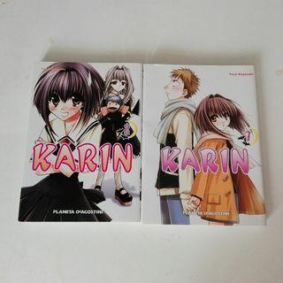 Comic Karin
