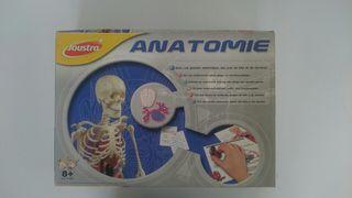 Juego Anatomia
