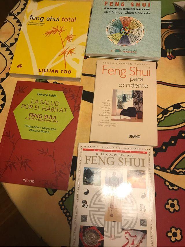 Lote libros feng shui de segunda mano por 75 en - Libros feng shui ...