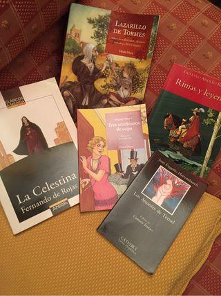 Libros texto literatura español