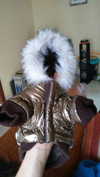 chaqueta impermeable para perro