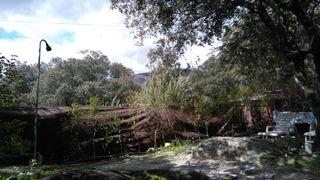 Camping Piscis Hergo Homes Cronos LX