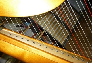 Harpe celtique Camac Harps France