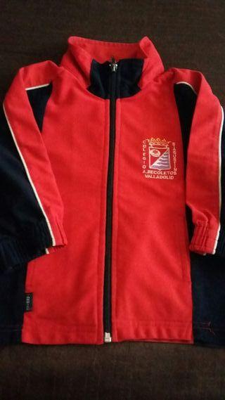 uniforme colegio san agustin