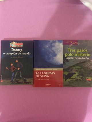 Libro lectura lote 3x12€ (en gallego)