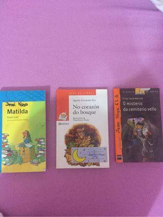 Libro lectura lote 3x12€