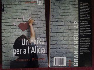 UN KAIKU PER A L' ALICIA