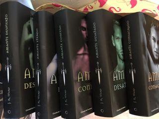 Coleccion 5 libros amantes