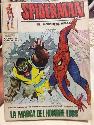 Spiderma número 56 Vértice
