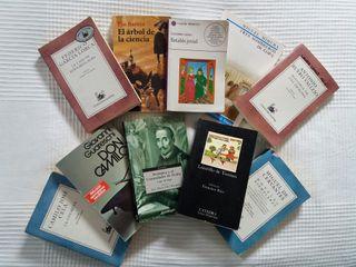 Lote de clásicos de la literatura
