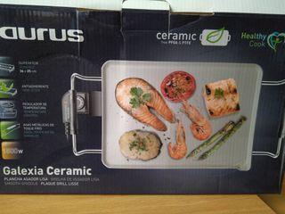 Plancha de cocina