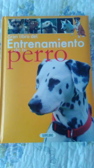Libro Entrenar perros