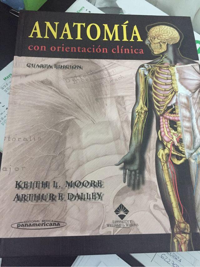 Enciclopedia anatomia moore de segunda mano por 40 € en Puente Genil ...