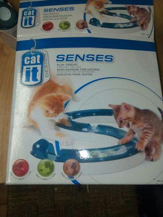 Juquete para gatos