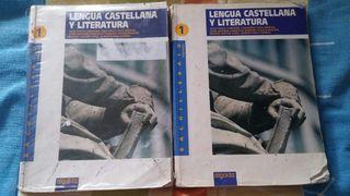 Lengua castellana y literatura 1°Bach
