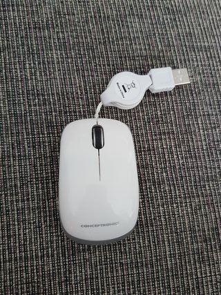 Ratón pequeño