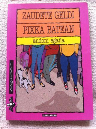 Libro Zaudete Geldi Pixka Batean