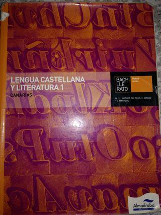 Lengua castellana y literatura Bachillerato