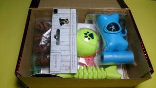 Pets Shtaif Box