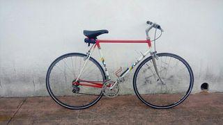 Bicicleta Laiz