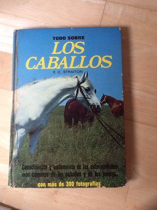 Libro todo sobre caballos