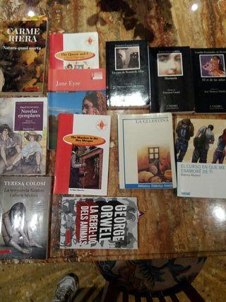 Libros de lectura de castellano y valenciano