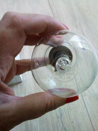 Lote bombillas halogenas con casquillos